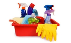 Domestic cleaning service  thumbnail image 1