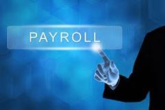 Payroll (Monthly) thumbnail image 1